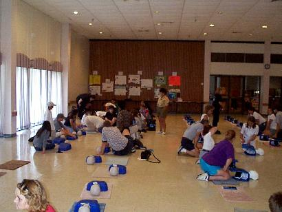 Large Group of People Practicing CPR