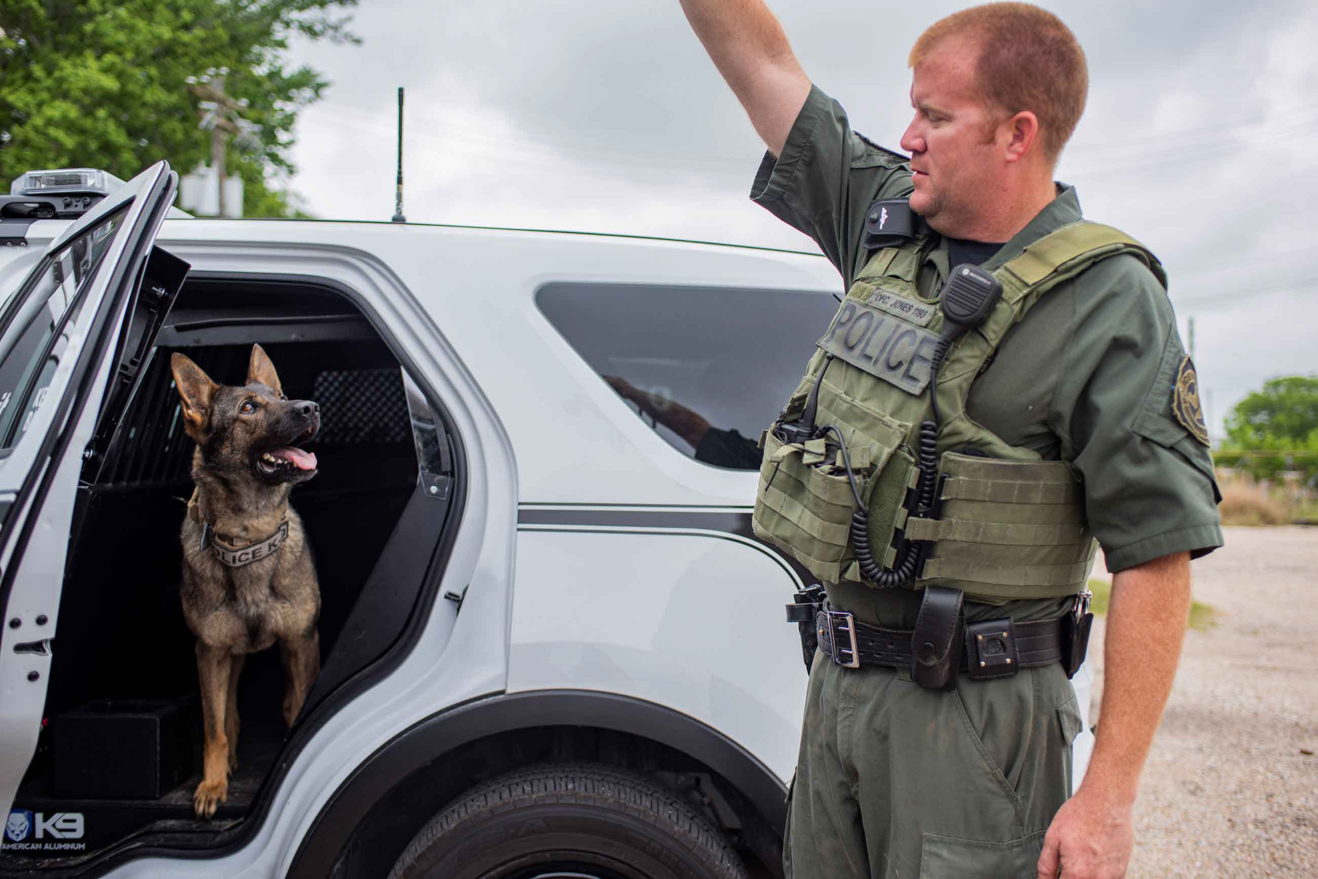 K9 unit with officer
