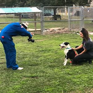 Pet photographer taking picture of dog with volunteer.
