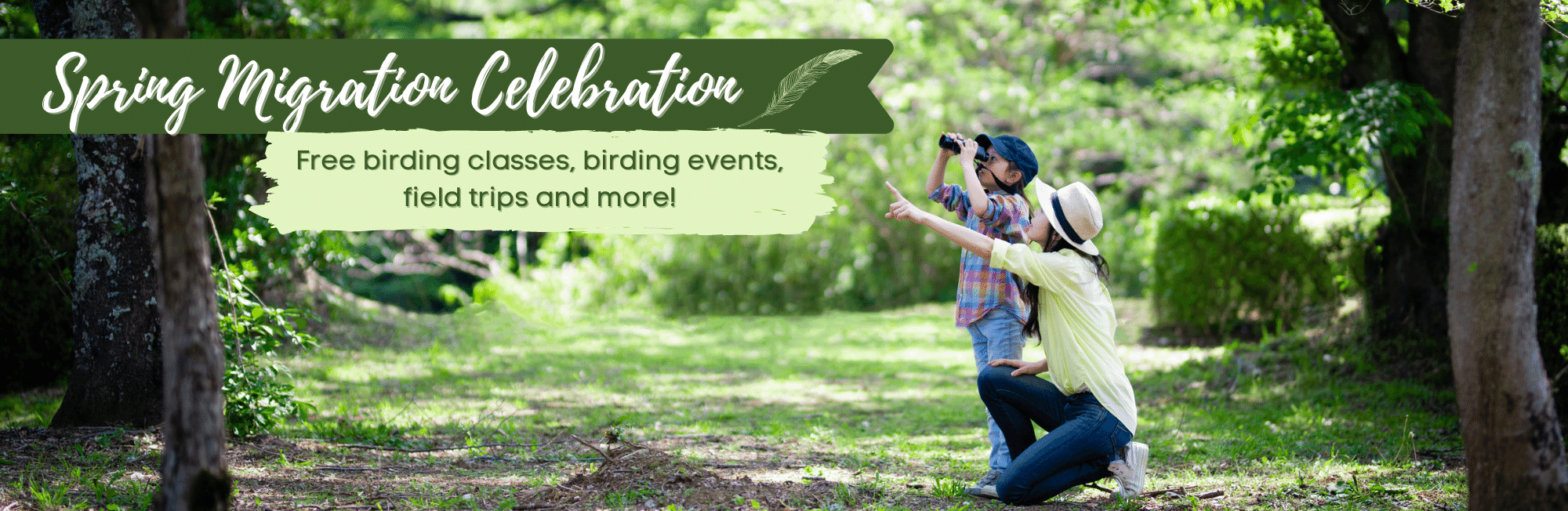 Explore classes, events, and exclusive hotel packages to experience this annual event on the Great Texas Coastal Birding Trail.