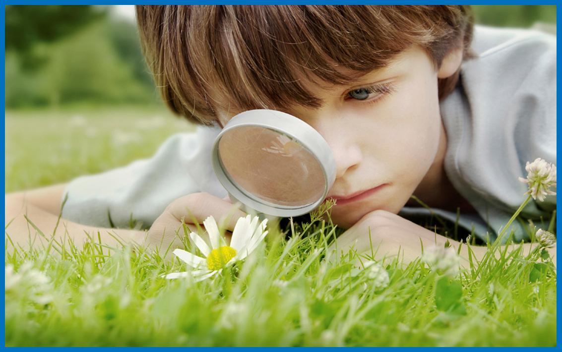 List of Search Engines for Children
