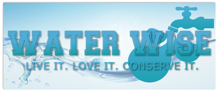 WATERWISEgraphicnew.png
